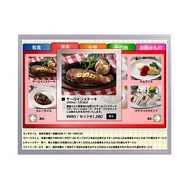 "Dalle LCD TFT 15.0"", XGA, 1024 x 768 pixels : AA150XS02"