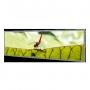 """49.5""""Resizing LCD 1920x538 ratio 16:4.5 : SSF4913"""