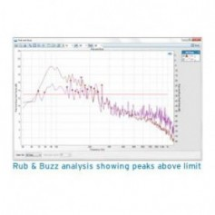 Analyse électro-acoustique : Option Rub and Buzz et détection de fuites d'air de bruit modulé