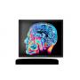 "15"" Fanless Slim Medical LCD Monitor : MEDDP-415"