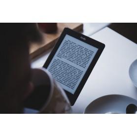 Afficheur E-Paper pour écrans segmentés : ComFlec