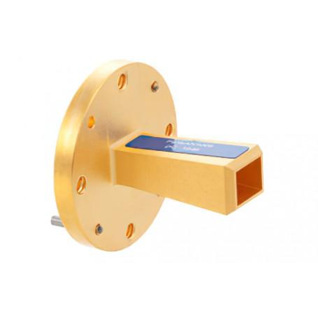 Antenne cornet à guide d'ondes à gain standard : Série PEWAN
