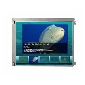 "Dalle LCD TFT 12.1"", XGA, 1024 x 768 pixels : AA121XK01"