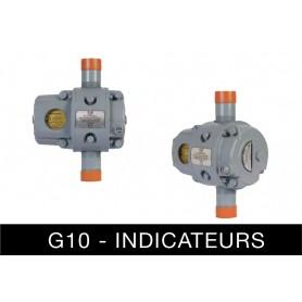 Compteur de gaz rotatif metrique