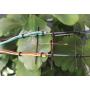 Capteur surface et température feuille : LAT-B2