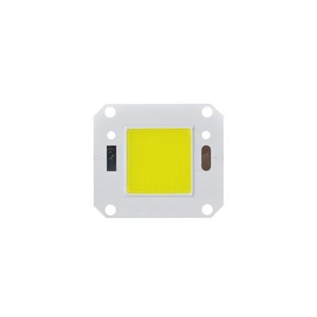 LED COB 20 - 100 W : LT005