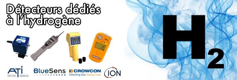 Détecteurs portables et fixes dédiés à l'utilisation de d'hydrogène