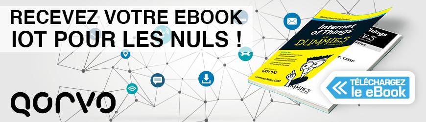 """Recevez votre ebook """"L'IoT pour les nuls"""""""